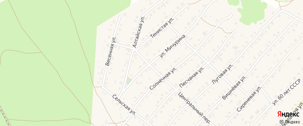Улица Мичурина на карте села Зудилово с номерами домов