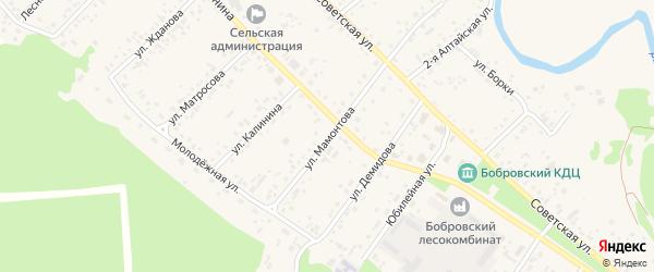 Улица Мамонтова на карте села Бобровки с номерами домов