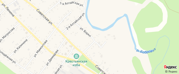 Улица Борки на карте села Бобровки с номерами домов