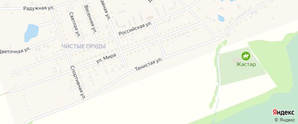 Тенистая улица на карте села Фирсово с номерами домов