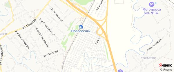 Карта садового некоммерческого товарищества Домостроителя в Алтайском крае с улицами и номерами домов