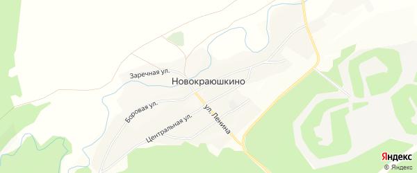 Карта села Новокраюшкино в Алтайском крае с улицами и номерами домов