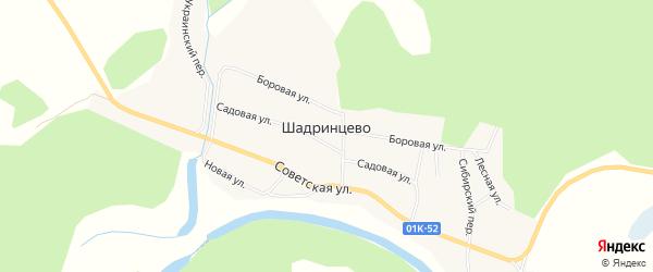 Карта села Шадринцево в Алтайском крае с улицами и номерами домов