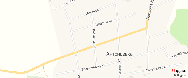 Колхозная улица на карте села Антоньевки с номерами домов