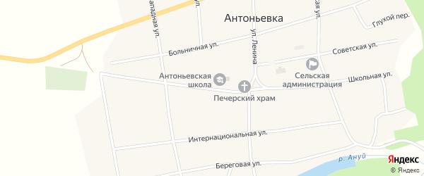 Школьная улица на карте села Антоньевки с номерами домов