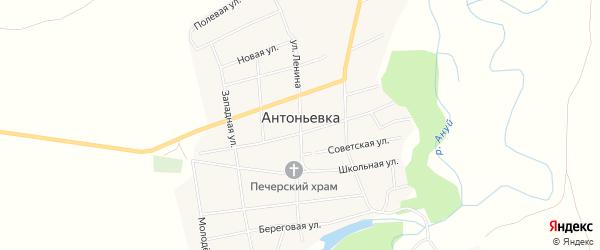 Карта села Антоньевки в Алтайском крае с улицами и номерами домов