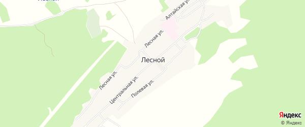 Карта поселка Лесной (Боровихинский с/с) в Алтайском крае с улицами и номерами домов