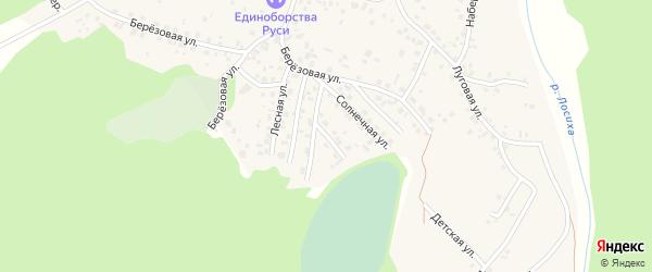 Майская улица на карте села Санниково с номерами домов