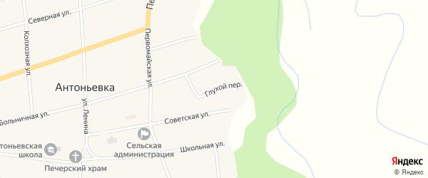 Глухой переулок на карте села Антоньевки с номерами домов