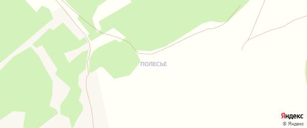 Полесье мкр Еловая улица на карте села Фирсово с номерами домов
