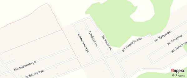 Рощино мкр Грибная улица на карте села Фирсово с номерами домов