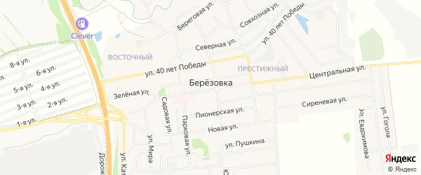 Карта села Березовки в Алтайском крае с улицами и номерами домов