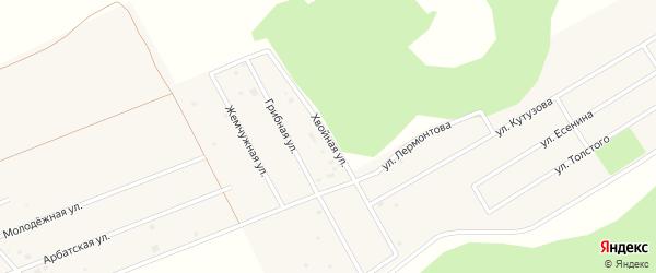 Рощино мкр Хвойная улица на карте села Фирсово с номерами домов