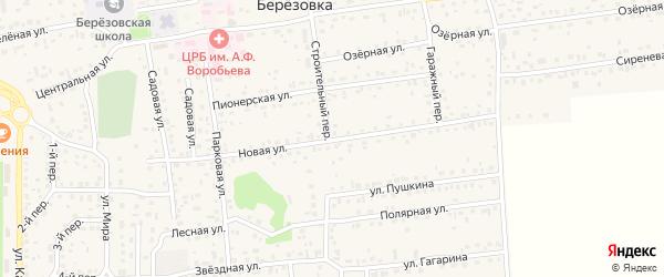Новая улица на карте села Березовки с номерами домов