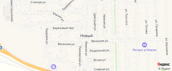 Мирная улица на карте Нового поселка с номерами домов