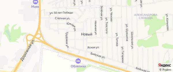 Карта Нового поселка в Алтайском крае с улицами и номерами домов