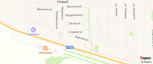 Славная улица на карте Нового поселка с номерами домов