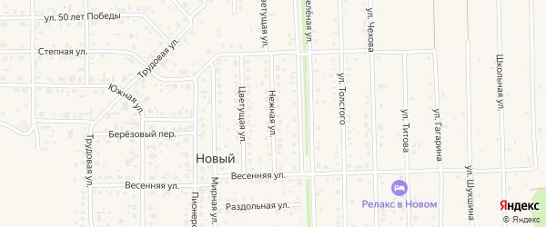 Нежная улица на карте Нового поселка с номерами домов