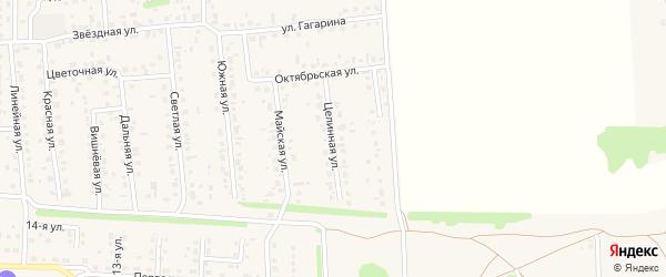 Целинная улица на карте села Березовки с номерами домов