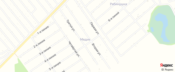 2-я линия на карте садового некоммерческого товарищества Рябинушки с номерами домов