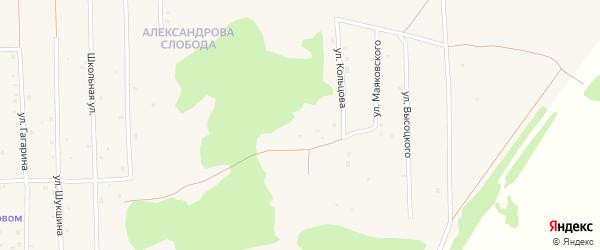 Улица Есенина на карте Нового поселка с номерами домов