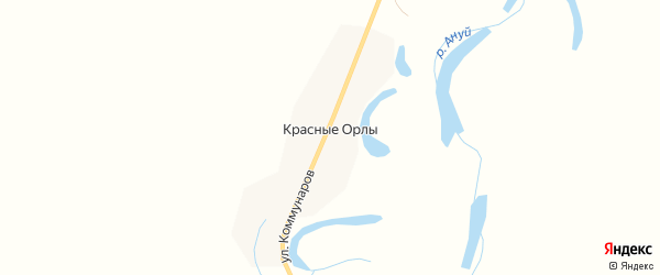 Карта поселка Красные Орлы в Алтайском крае с улицами и номерами домов