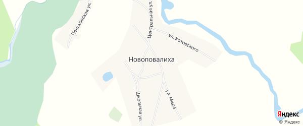 Карта села Новоповалихи в Алтайском крае с улицами и номерами домов