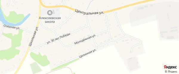 Молодежная улица на карте села Алексеевки с номерами домов