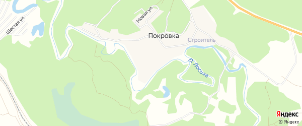 Карта поселка Покровки в Алтайском крае с улицами и номерами домов