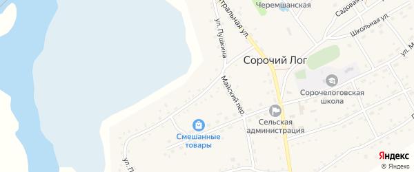 Улица Пушкина на карте села Сорочьего Лога с номерами домов