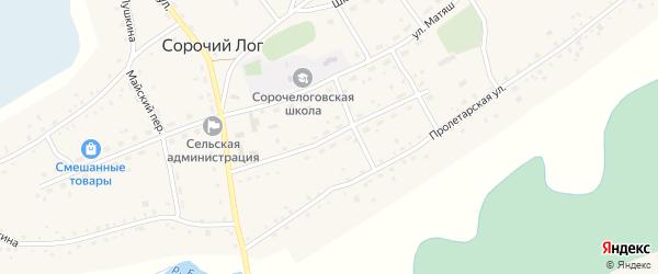 Молодежная улица на карте села Сорочьего Лога с номерами домов