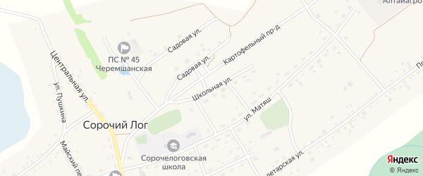 Школьная улица на карте села Сорочьего Лога с номерами домов