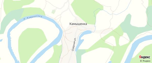 Карта села Камышенки в Алтайском крае с улицами и номерами домов