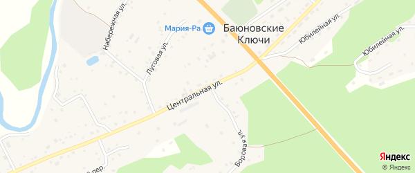 Центральная улица на карте села Баюновские Ключей с номерами домов