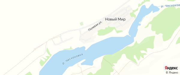 Карта садового некоммерческого товарищества Нового мира в Алтайском крае с улицами и номерами домов