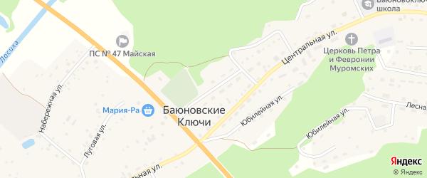 Молодежная улица на карте села Баюновские Ключей с номерами домов