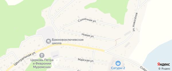 Новая улица на карте села Баюновские Ключей с номерами домов