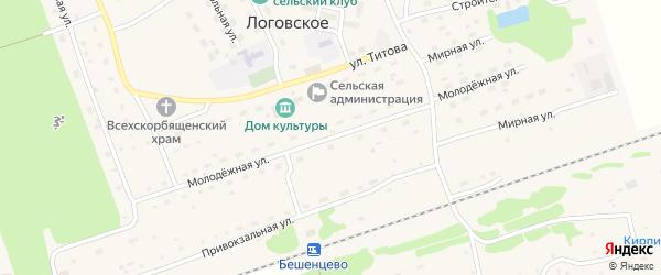 Молодежная улица на карте Логовского села с номерами домов