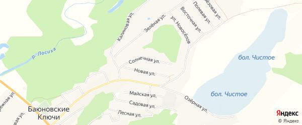 Карта села Баюновские Ключей в Алтайском крае с улицами и номерами домов