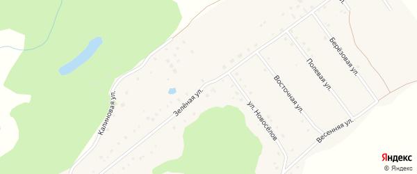 Зеленая улица на карте села Баюновские Ключей с номерами домов