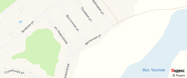 Весенняя улица на карте села Баюновские Ключей с номерами домов