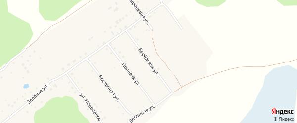 Березовая улица на карте садового некоммерческого товарищества Энергетика с номерами домов