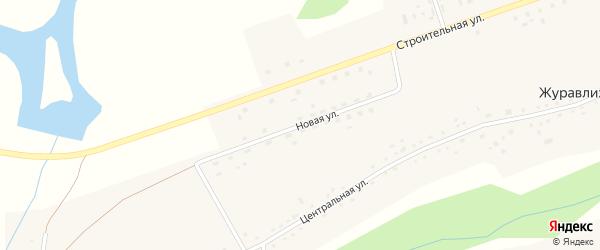 Новая улица на карте села Журавлихи с номерами домов