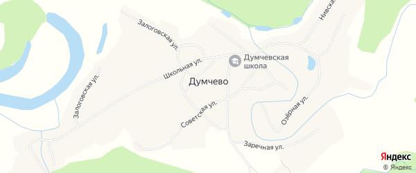 Карта села Думчево в Алтайском крае с улицами и номерами домов