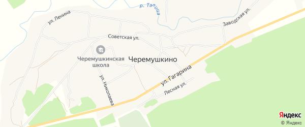 Карта села Черемушкино в Алтайском крае с улицами и номерами домов