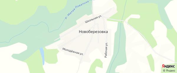 Карта села Новоберезовки в Алтайском крае с улицами и номерами домов