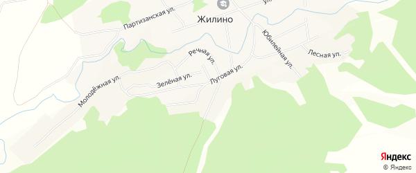 Карта села Жилино в Алтайском крае с улицами и номерами домов