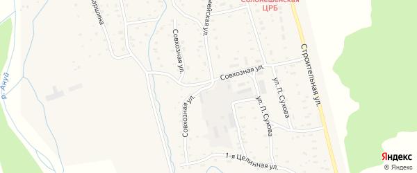 Совхозная улица на карте Солонешного села с номерами домов