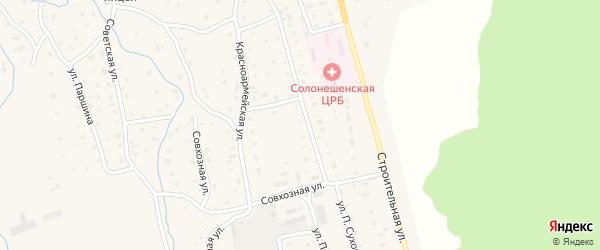 Цветочная улица на карте Солонешного села с номерами домов