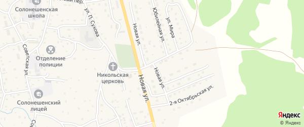 Новая улица на карте Солонешного села с номерами домов